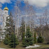 Оттепель в Самаре :: Olga F