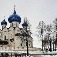 Собор Рождества Богородицы :: Юрий Шувалов