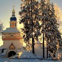 Зимняя сказка. :: Zoya P.