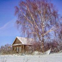 Деревенька моя деревянная,дальняя.. :: Алла Кочергина