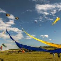 Кудыкина гора. Воздушный фестиваль 2017г. Часть первая. :: Юрий Клишин