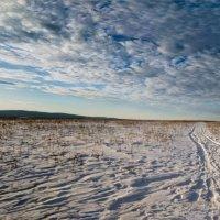 В полях Южного Урала :: Георгий Морозов