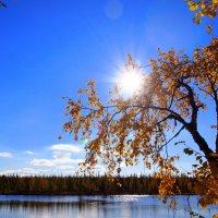 Утро чудесное :: ГАЛИНА Баранова