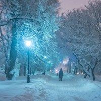 Москва. Коломенское. Ночь. Метель. :: Игорь Герман