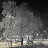 Зимний вечер :: Вера Щукина