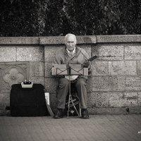 Уличный музыкант :: Александр Баранов