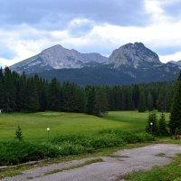 Альпийские просторы :: Ольга