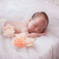 сладких снов :: Александра Супрун