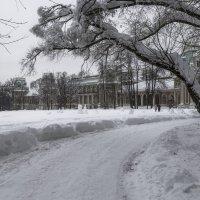Февральский снег :: Александра