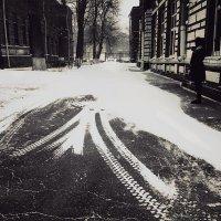 ветер и снег с утра :: Николай Семёнов