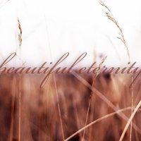 Beautiful Eternity :: Дмитрий Алексеев