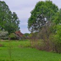 Старая деревня. :: Aleksandr Ivanov67 Иванов