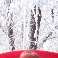 Гламурное яблочное искушение для влюблённых в День святого Валентина!... :: Алекс Аро Аро