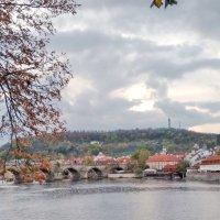 На реке Влтаве в Праге :: Tamara