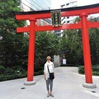 Тории в Токио :: Swetlana V