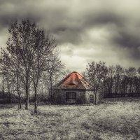 Осенний день в Германии......... :: Александр Селезнев