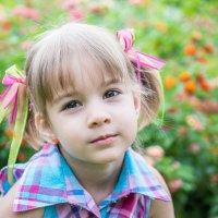 Портрет девочки :: Лана Маргарити