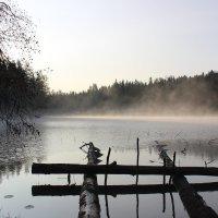 Осенний туман :: Влад В.