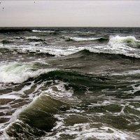 Кипит встревоженное море, Мятутся волны, как в плену;( В. Брюсов) :: Людмила