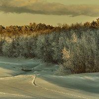 зима :: Андрей Выровой