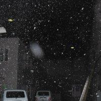 Снежинки :: Юрий Гайворонский
