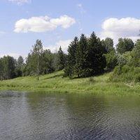 Озеро :: Ольга Беляева