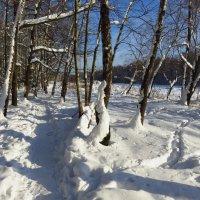 Когда повеет вдруг весною :: Андрей Лукьянов