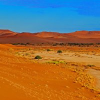 Африка,Намибиа,Пустыня Намиб :: Jakob Gardok