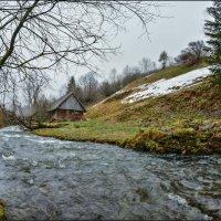 Скоро зима... :: Юрий Гординский