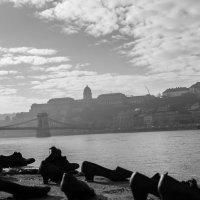 Дунай :: Владимир Бухаленков