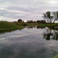 Картина маслом...или река Битюг своими глазами.. :: Ольга Кривых