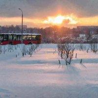 Скажи, ты зимний ли, весенний? :: Ирина Данилова