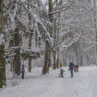 Прогулка под снегопадом :: Сергей Цветков