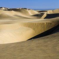 красота бесконечных песчаных дюн :: Георгий А