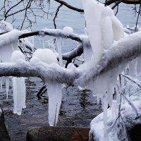 Художества мороза :: Маргарита Батырева