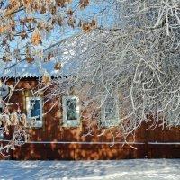 За снедными шторами :: ivolga