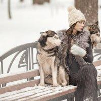 Дама с собачками :: Вячеслав