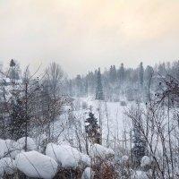 Снег кружился :: Наталья Ерёменко