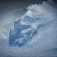 «Улыбка гения русской поэзии» или, «Что, иногда, может привидеться в снежных сугробах» :: Станислав Лебединский