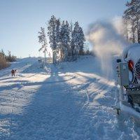 Снежный джин приветствует вас! :: Дмитрий Шкредов