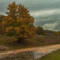 Осень :: Анна Пугач