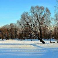 Снежная идиллия... :: Sergey Gordoff