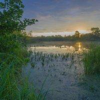 На пойменном озере Томбыш. :: Igor Andreev