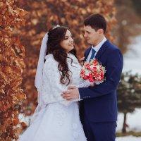 Теплота зимней любви :: Сергей Урюпин