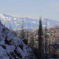 КУЛАСЬИНСКИЕ ТЕСНИНЫ, зима в Бричмулле. :: Виктор Осипчук