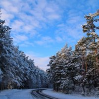 Зимняя дорога.. :: Татьянка *