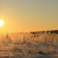 Морозный восход солнца :: Sergey