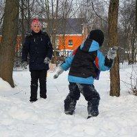 Снежки. :: Александр Кемпанен