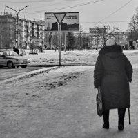 Выборы, выборы... :: Михаил Полыгалов