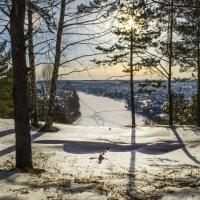 Солнце на лето, зима на мороз :: Роман Пацкевич